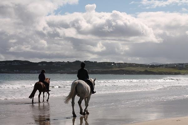 playa en irlanda con caballos